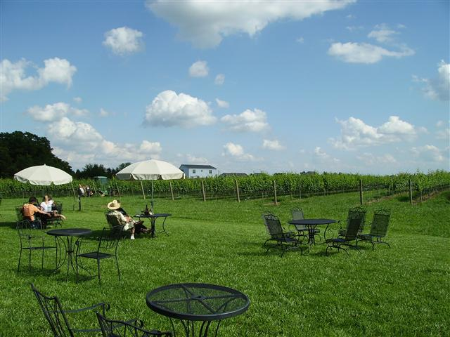 Auburn Road Winery. Relax and enjoy a bottle of wine on a beautiful summer day!